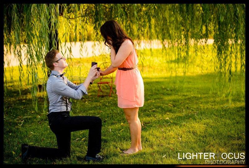 Best Proposal ever